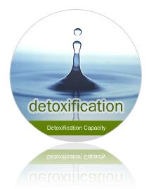 10 Simple Ways to Detox!
