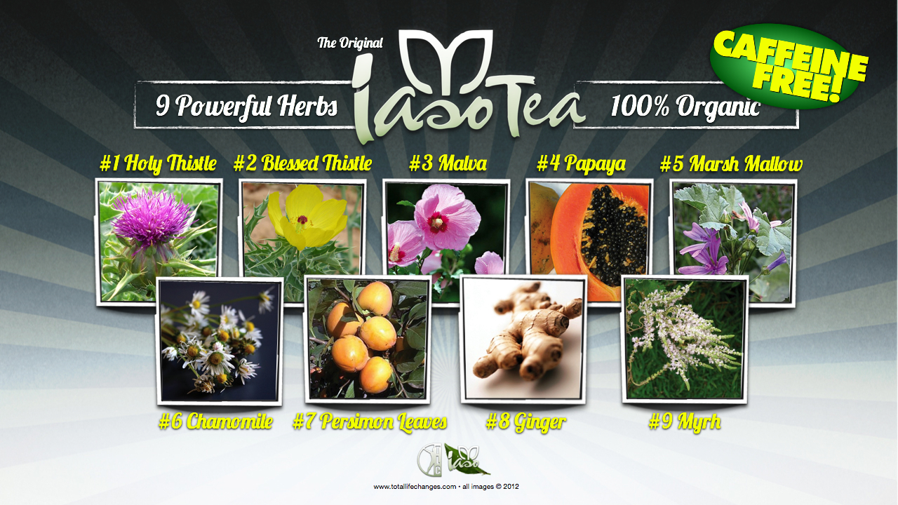 9 Powerful Herbs that Will Detox Your Entire Body! |Iaso Detox Tea