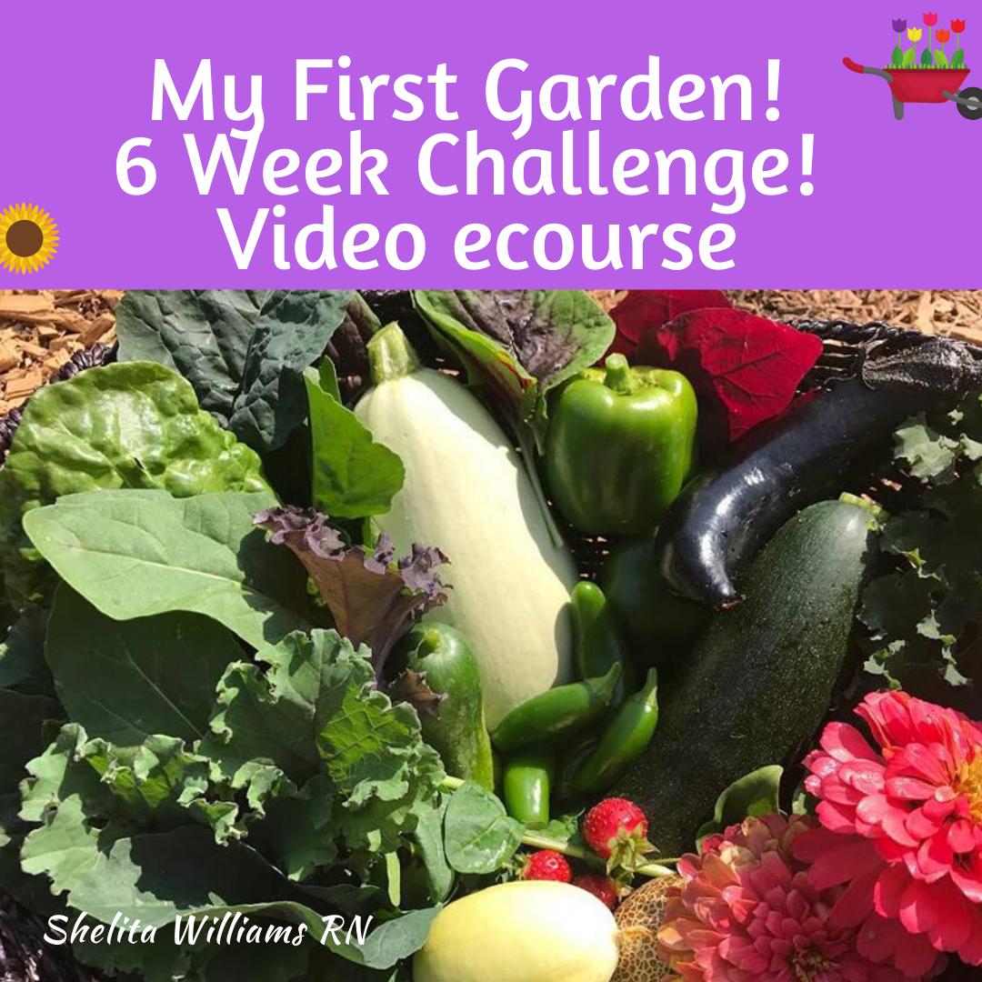 My First Garden 6 Week Challenge: Online Video Course!