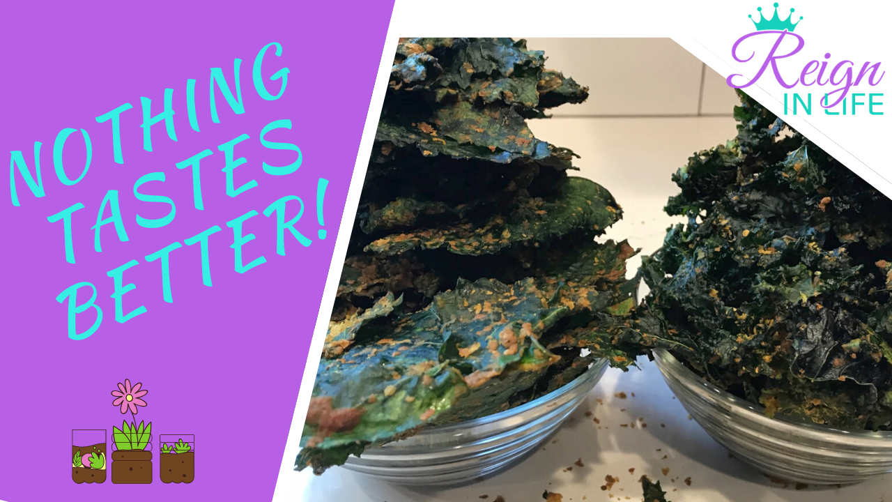 Harvesting Kale to Make Cheesey Raw Kale Chips! From Garden to Table! Keto Vegan!